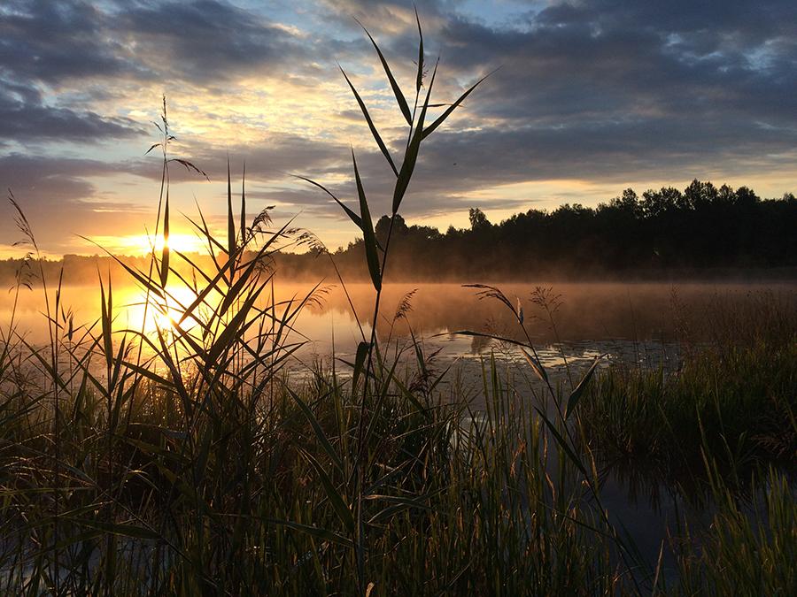 Underbart morgonljus i morse