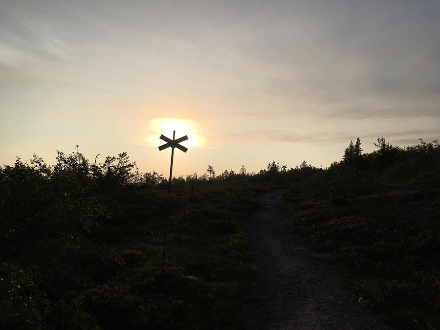 Underbart morgonljus i somras