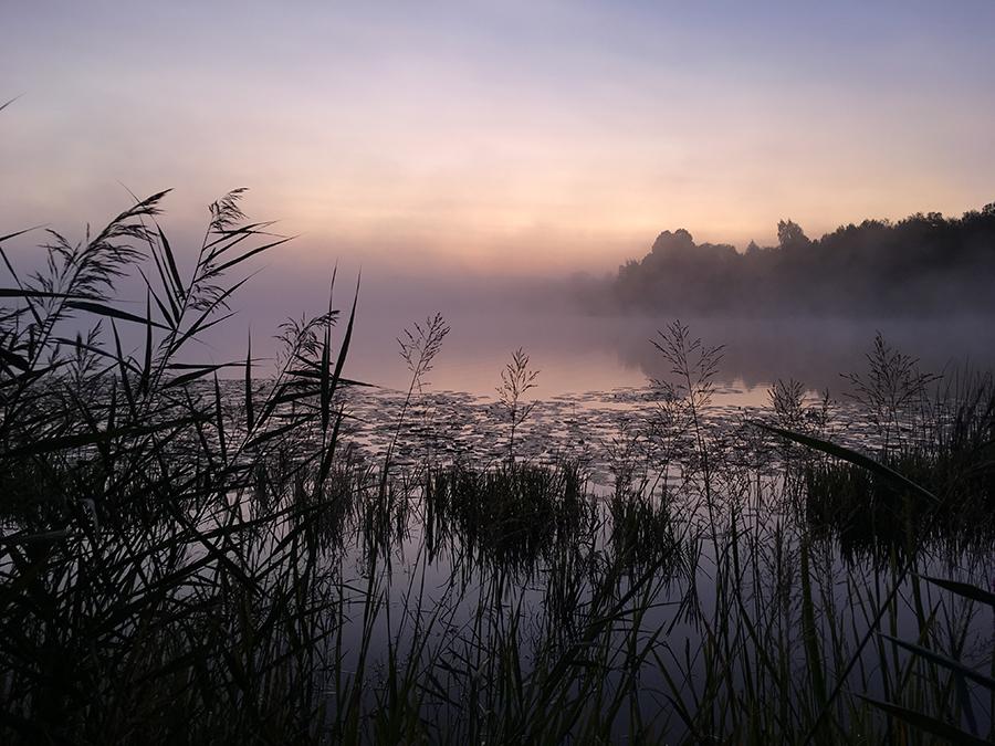 Underbart morgonljus