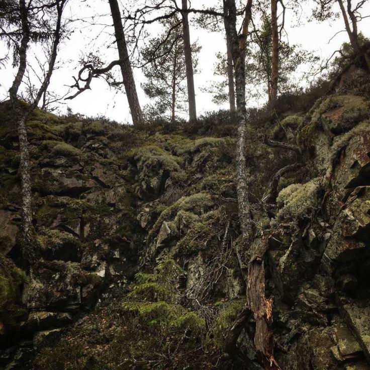 På väg uppför branten för att sedan gå längs ravinens kant