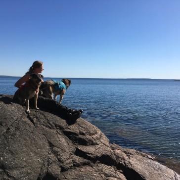 Jag och hundarna på en av alla klipphällar man kan nå relativt enkelt
