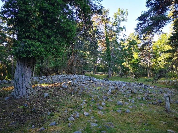 Ett av de 15-tal gravrösen som finns i naturreservatet