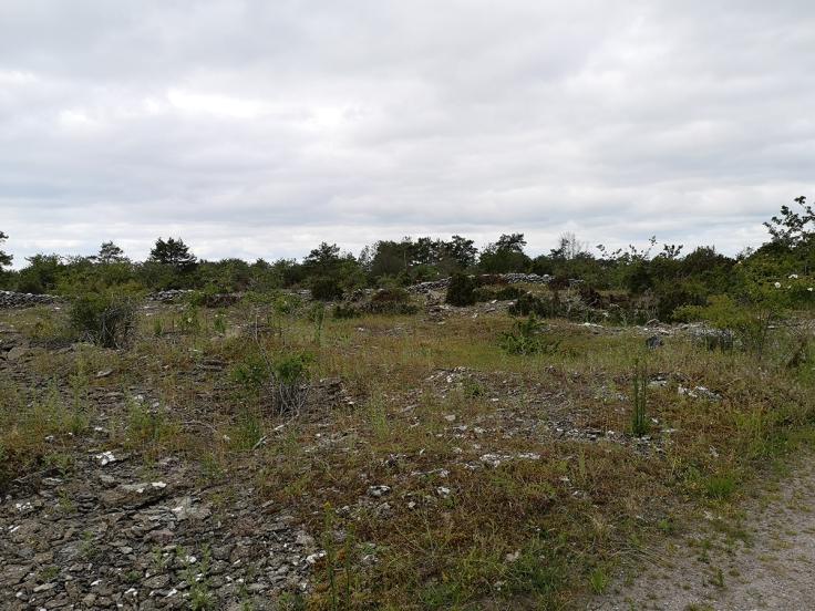 Persnäsvik - och det före detta kalkstensbrottet