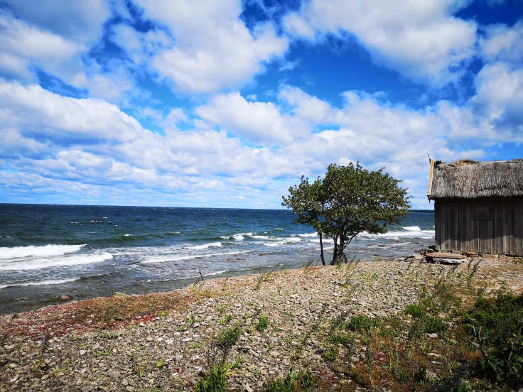 Vackert längs kustvägen (stenkusten på Ölands västra sida)