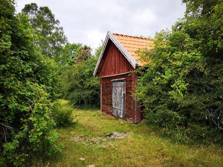 Dold byggnad - det här huset syntes inte för all växtlighet