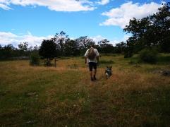 Mattias och min ena hund på en av ängarna