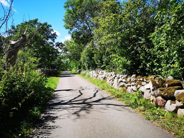 Asfaltsväg i idyll