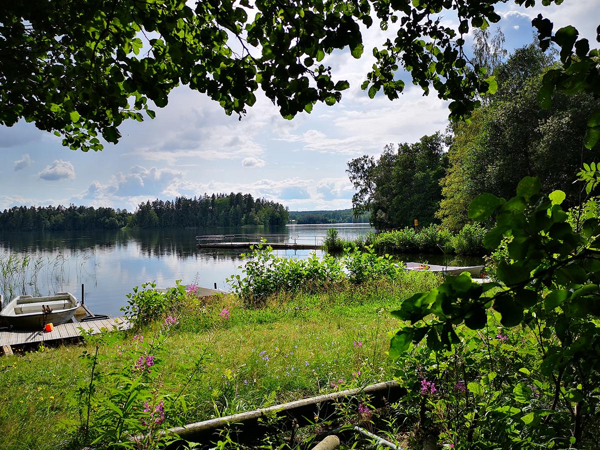 Däremot brukar det finnas vid den fina takade grillplastsen vid badplatsen Borgmästarängen, ungefär en km från vindskydden.