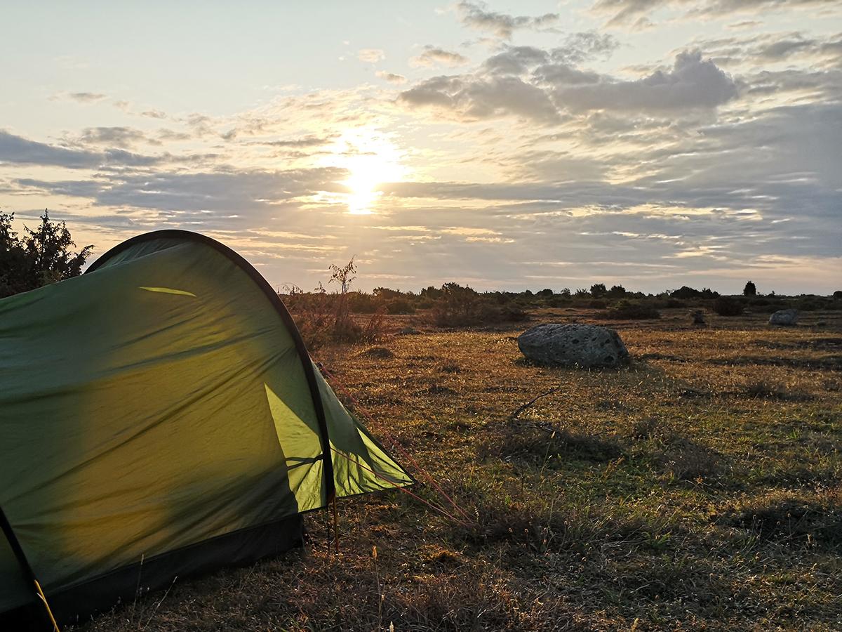 Tältet i morgonljus